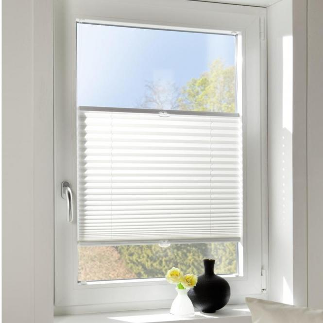 Plissee pirat plissee foxx blackout 03 grau online kaufen for Fenster 80 x 90